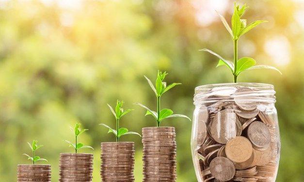 Ökologische Geldanlage: 5 wichtige Aspekte, die Sie beachten sollten