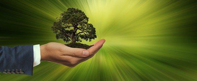 Megatrend Nachhaltigkeit bietet wirtschaftliche Chancen für Banken