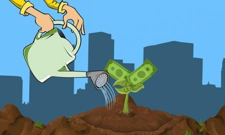 Umweltfonds: Sechs wichtige Kriterien bei der Auswahl